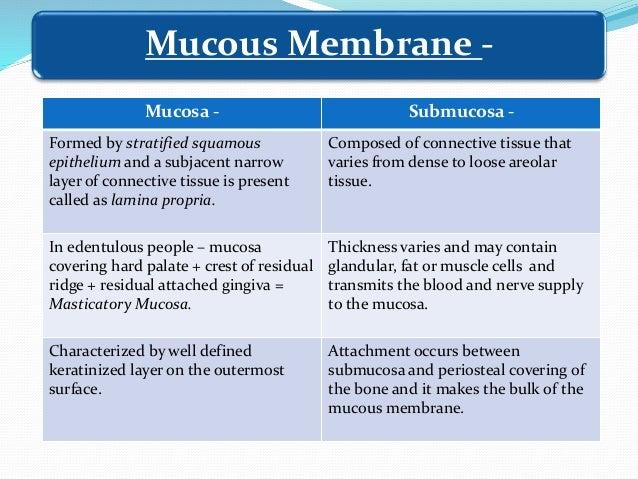 Oral Mucous Membrane Mucous Membrane -