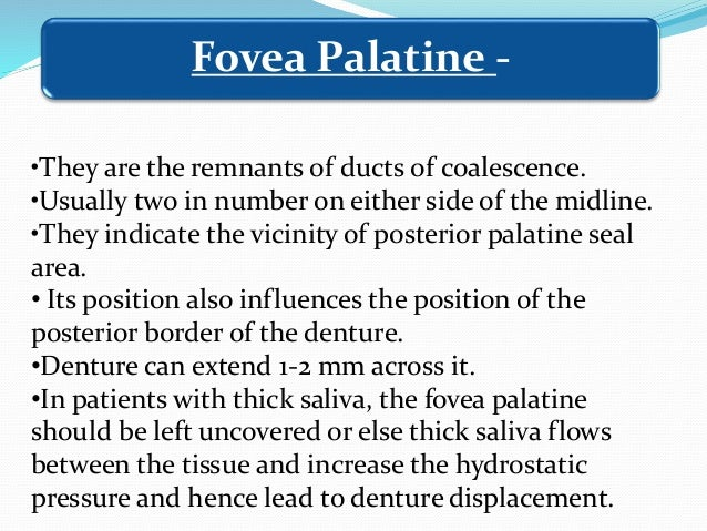 •Fold or folds of mucous membrane extending from mucous membrane reflection area to the slope or crest of residual alveola...