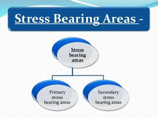 Stress bearing areas Primary stress bearing areas Secondary stress bearing areas Stress Bearing Areas -