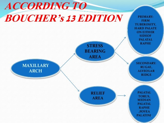 ACCORDING TO BOUCHER's 13 EDITION MAXILLARY ARCH STRESS BEARING AREA RELIEF AREA PRIMARY: FIRM TUBEROSITY, HARD PALATE ON ...