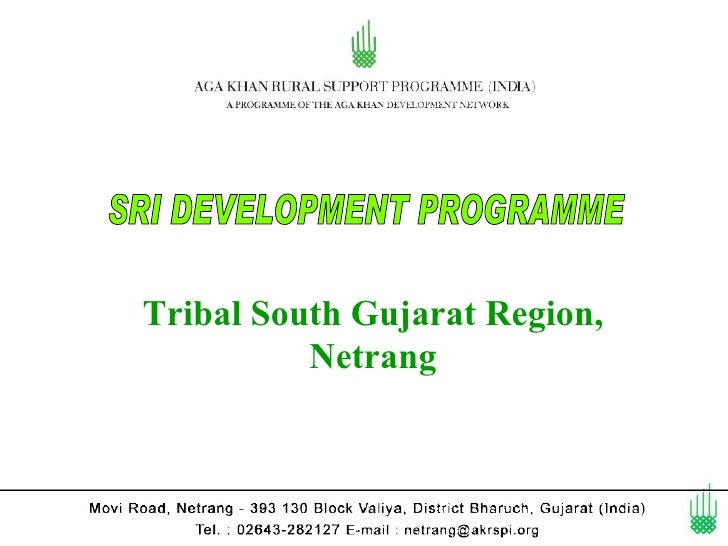 Tribal South Gujarat Region,          Netrang