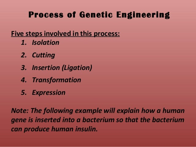 the steps to understanding genetic engineering The threat of human genetic engineering one major step towards reproductive genetic engineering is the proposal by us gene therapy pioneer, french anderson, to begin doing gene therapy on if the accumulation of genetic knowledge and advances in genetic enhancement technology.