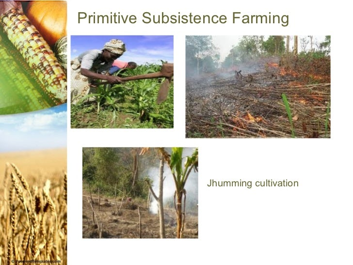 agriculture ( ppt made by akshit.manhas)