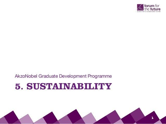 5. SUSTAINABILITYAkzoNobel Graduate Development Programme1