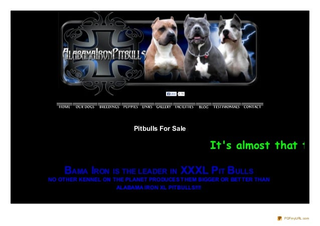 Like  2.7k  Pitbulls For Sale  It's almost that time BAMA IRON IS THE LEADER IN XXXL PIT BULLS NO OTHER KENNEL ON THE PLAN...