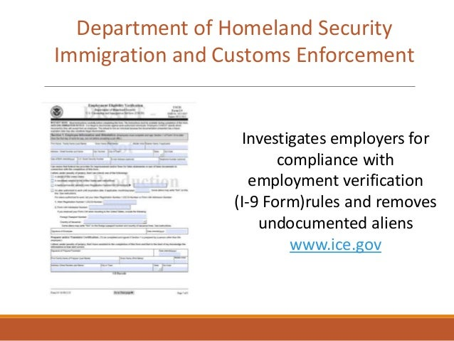 Department of Homeland Security Immigration and Customs Enforcement Investigates employers for compliance with employment ...