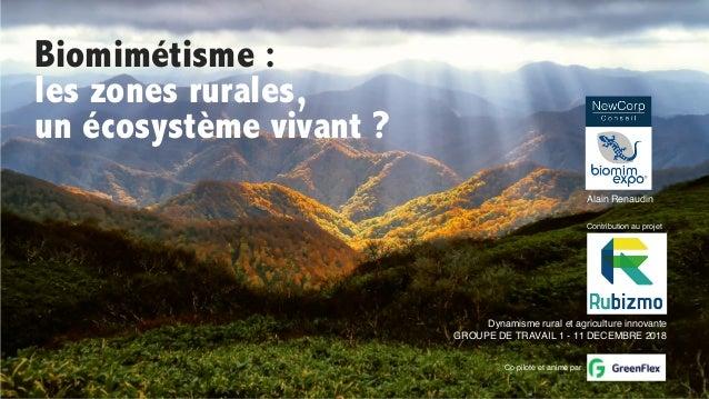 Biomimétisme : les zones rurales, un écosystème vivant ? Alain Renaudin Dynamisme rural et agriculture innovante GROUPE DE...