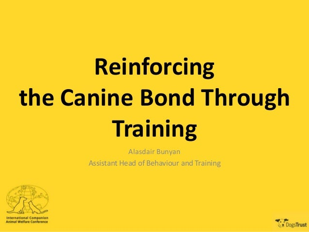 Reinforcing the Canine Bond Through Training Alasdair Bunyan Assistant Head of Behaviour and Training