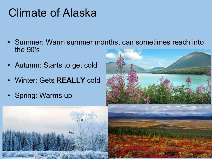 Climate of Alaska <ul><ul><li>Summer: Warm summer months, can sometimes reach into the 90's </li></ul></ul><ul><li> </l...