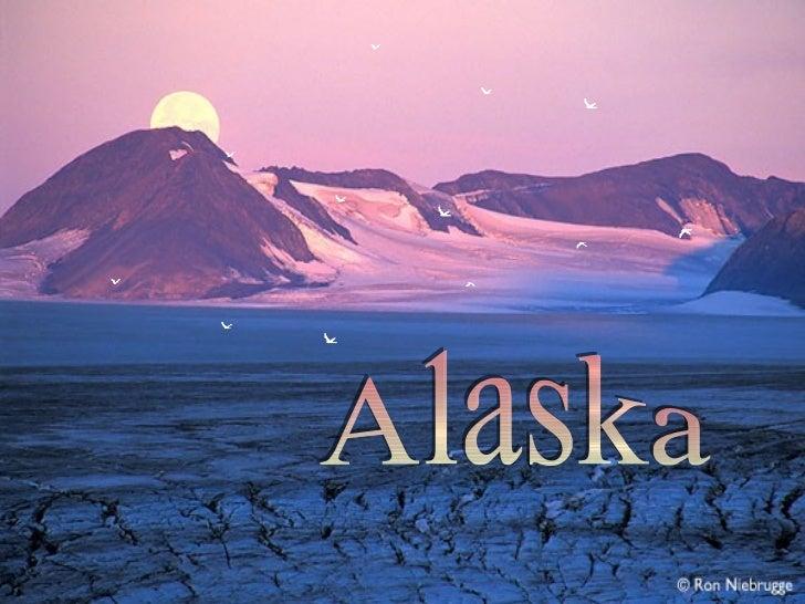 O Parque Nacional de Kenai é o menor dos 8 parques nacionais         do Alasca, mas em   compensação é um dos mais      bo...