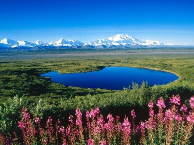 Alaska3 Slide 3