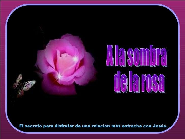 ♫  Enciende los altavoces HAZ CLIC PARA AVANZAR A la sombra de la rosa El secreto para disfrutar de una relación más estre...