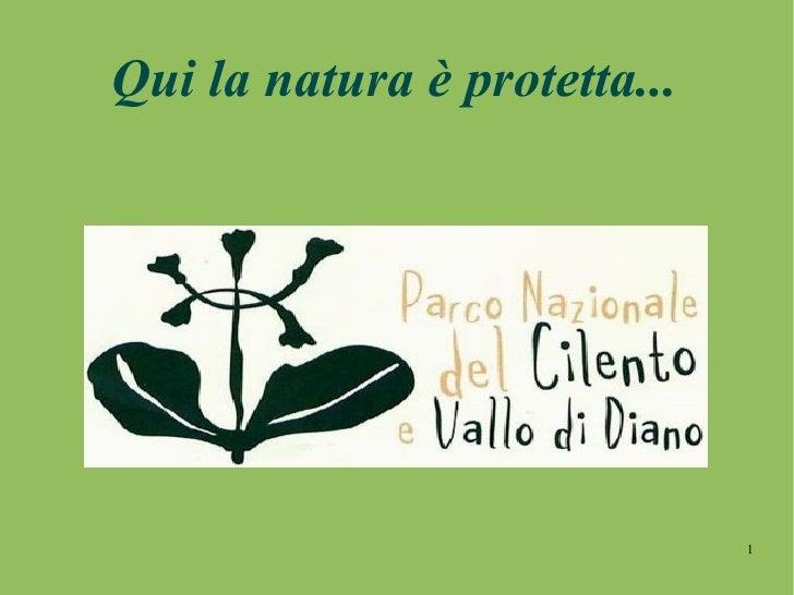 Qui la natura è protetta...