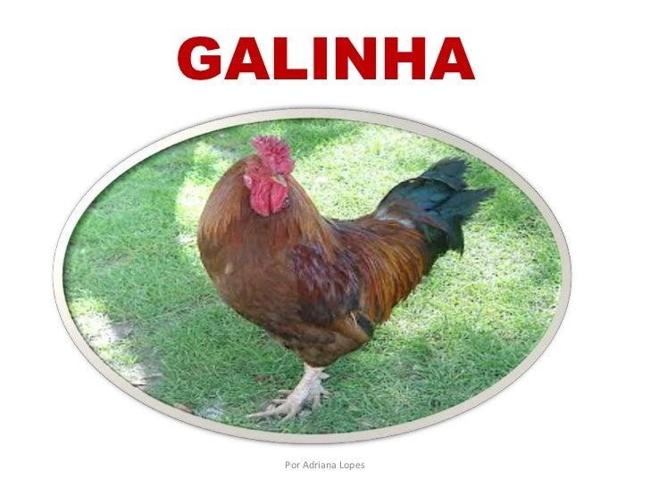 GALINHA  Por Adriana Lopes