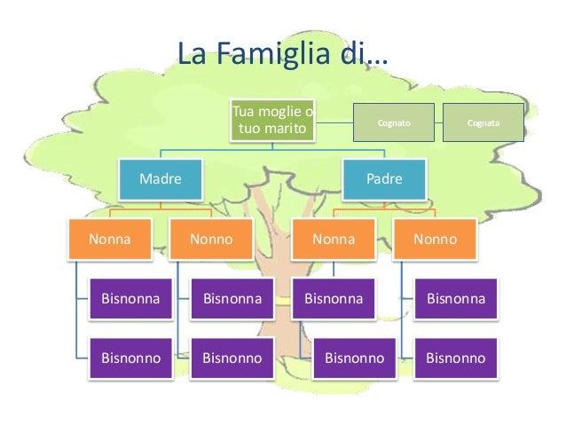 albero genealogico modello