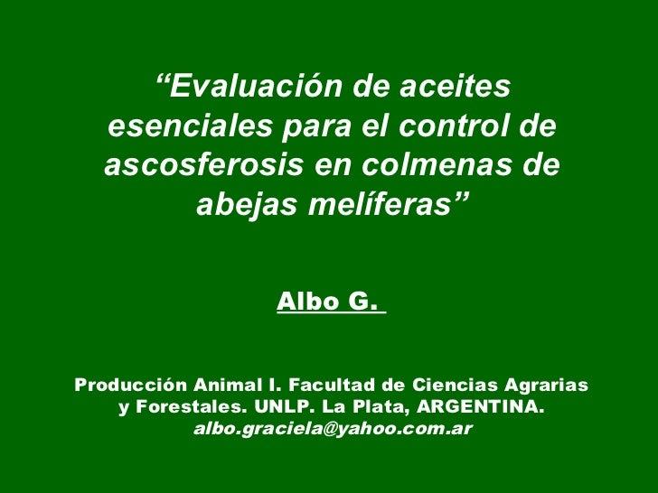 """""""Evaluación de aceites  esenciales para el control de  ascosferosis en colmenas de       abejas melíferas""""                ..."""
