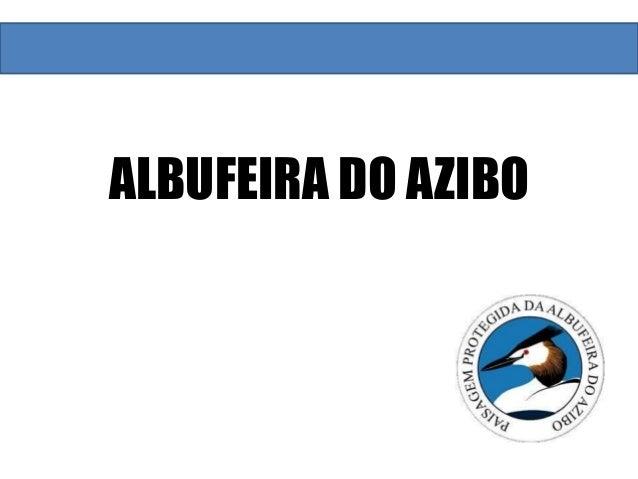 ALBUFEIRA DO AZIBO