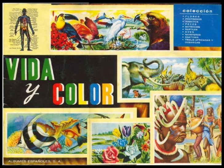 Album VIDA y COLOR