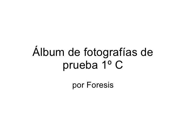 Álbum de fotografías de prueba 1º C por Foresis