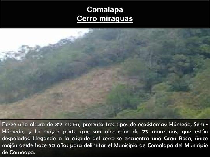 Comalapa                            Cerro miraguasPosee una altura de 812 msnm, presenta tres tipos de ecosistemas: Húmedo...