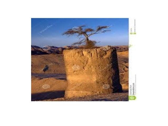 Álbum de fotografías desiertos