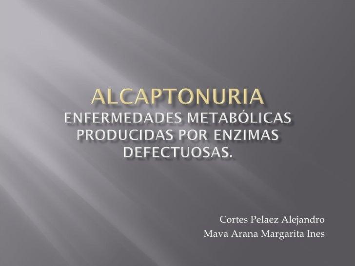 Cortes Pelaez Alejandro Mava Arana Margarita Ines