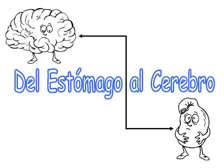 Del Estómago al Cerebro
