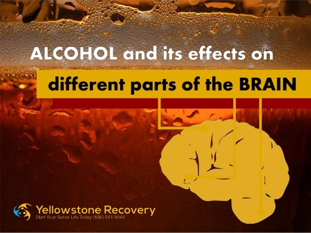 alcohol and its effects This ebook offers middle-school students a better understanding of the effects that drinking alcohol can have on the human body and its systems it is published by the american association for the advancement of science (aaas.