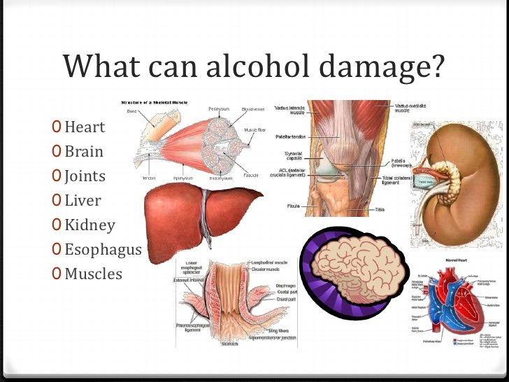 alcohol drinking presentation