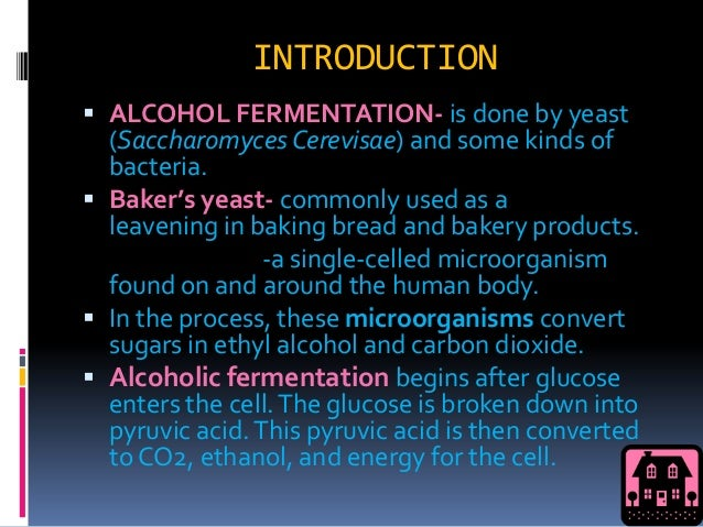 alcoholic fermentation lab Alcohol fermentation abstract introduction objectives methodology data and results discussion answers to que.