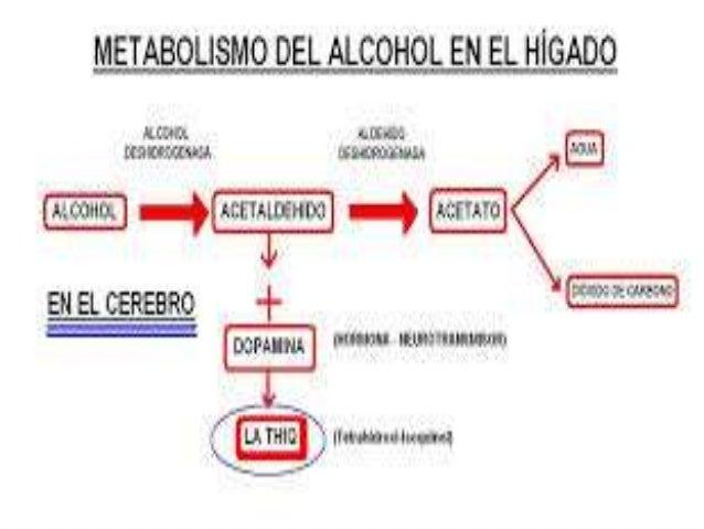 OBJETIVOS Ver cuanto porcentaje de la prevalencia de alcoholismo, afectaba a hombres y mujeres
