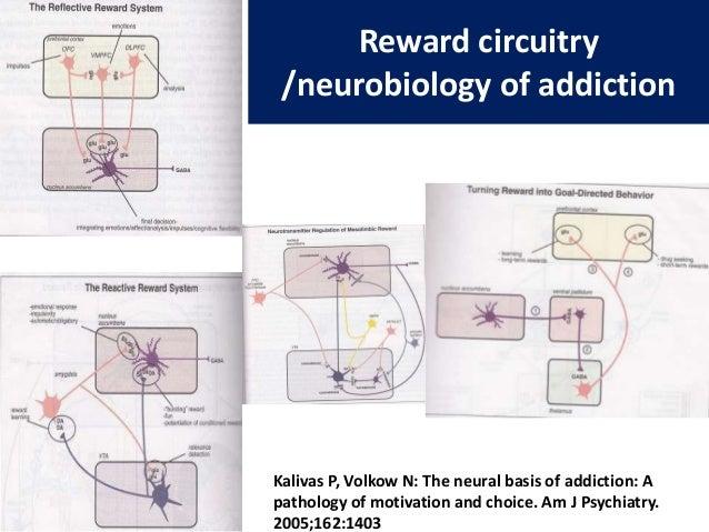 neurosteroids schizophrenia