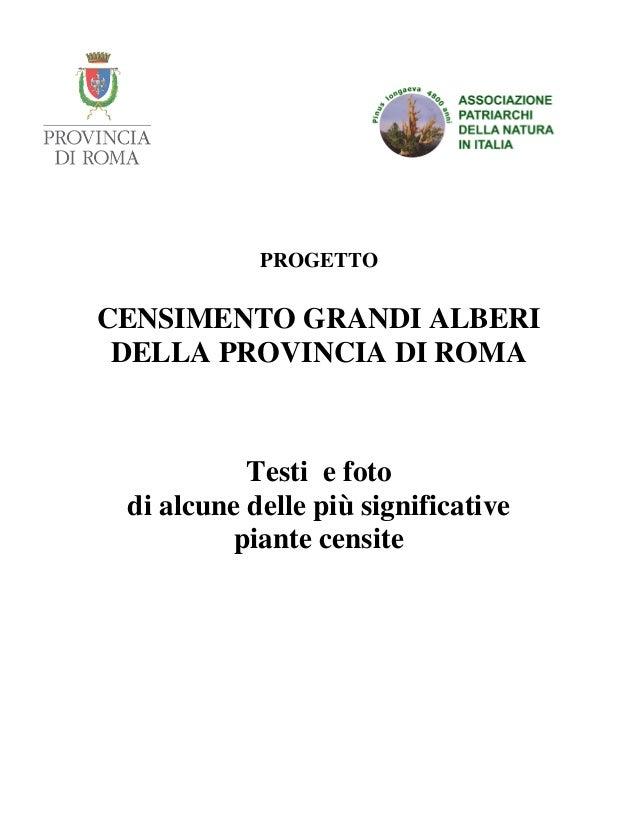 PROGETTO CENSIMENTO GRANDI ALBERI DELLA PROVINCIA DI ROMA Testi e foto di alcune delle più significative piante censite