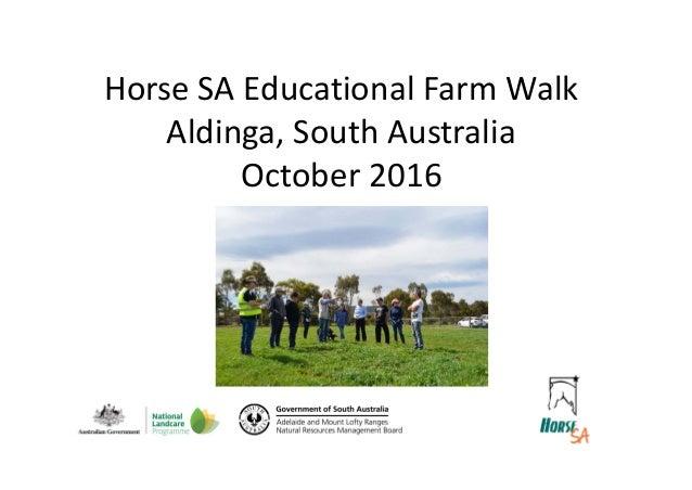 HorseSAEducationalFarmWalk Aldinga,SouthAustralia October2016