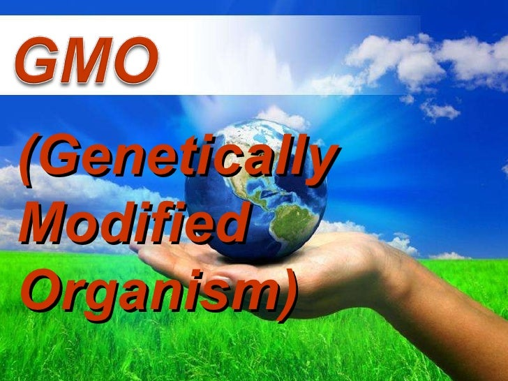 Free Powerpoint Templates (Genetically Modified Organism)