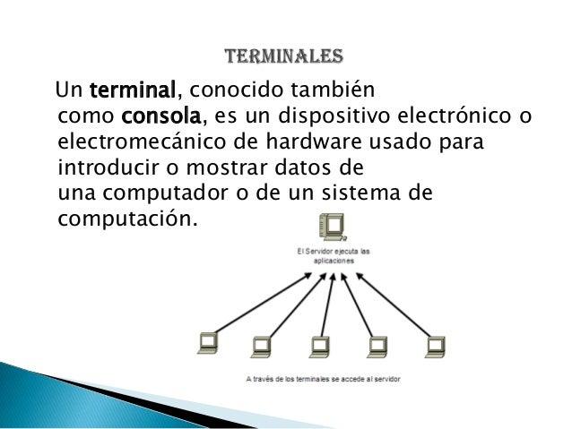 Alejandrina (1) Slide 3