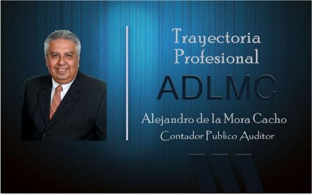 Alejandro de la mora consultor 2016