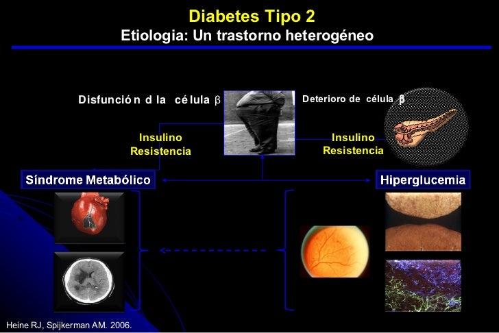 octeto ominoso de la diabetes pdf