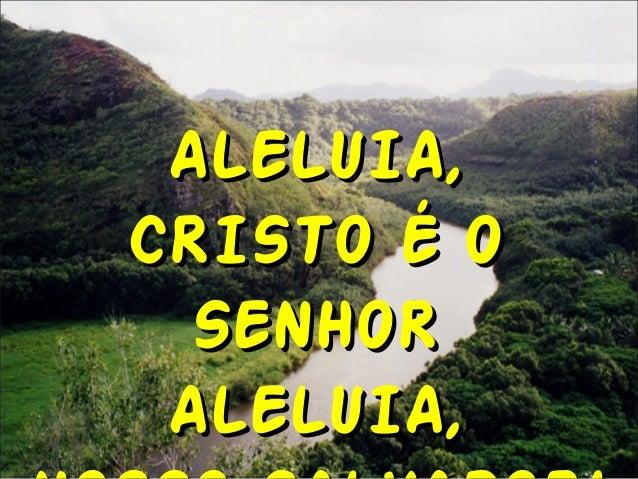ALELUIA,ALELUIA, CRISTO É OCRISTO É O SENHORSENHOR ALELUIA,ALELUIA,