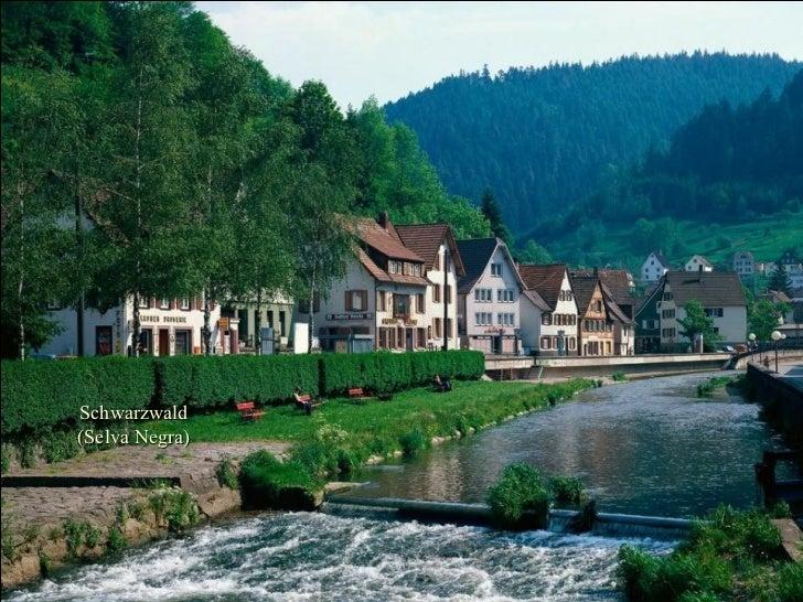 Schwarzwald (Selva Negra)