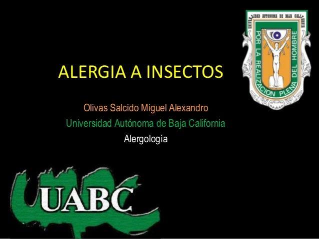 ALERGIA A INSECTOS    Olivas Salcido Miguel AlexandroUniversidad Autónoma de Baja California              Alergología