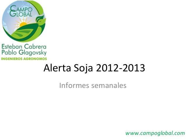 Alerta Soja 2012-2013   Informes semanales                    www.campoglobal.com