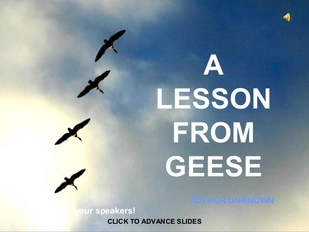 A LESSON FROM GEESE AUTHOR UNKNOWN CLICK TO ADVANCE SLIDES ♫ Turn on your speakers!