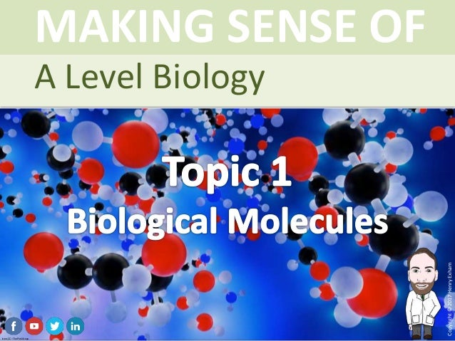 biology level With an emphasis on human biology, the cambridge o level biology syllabus enables learners to understand the technological world in which they live, and take an informed interest in science and.