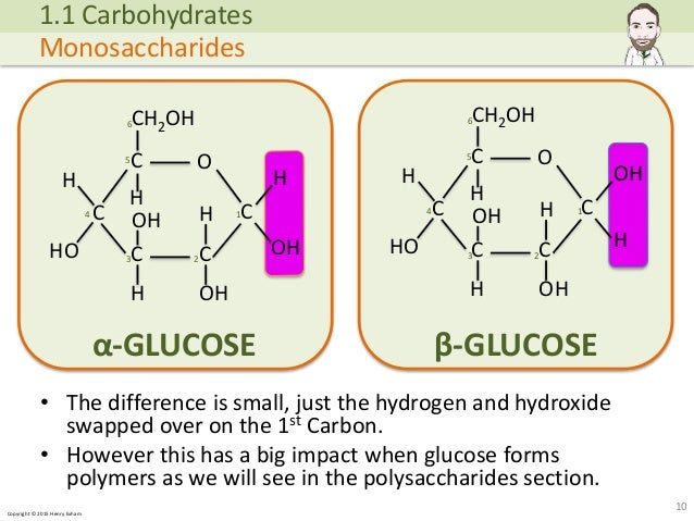 biological molecules Molecules: groups of atoms bonded together due to the sharing or donating of electronsexamples: carbon dioxide, water, nacl, oxygen biological.