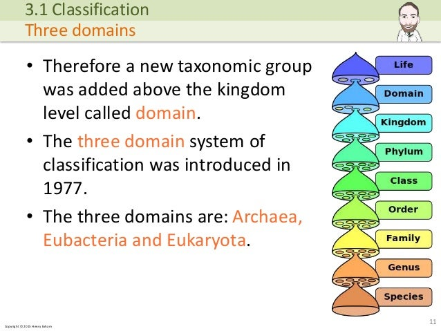 A Level Biology - Classification and Biodiversity