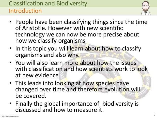 renaissance humanism essay topic everyday use essay heritage write classification essay explore biology