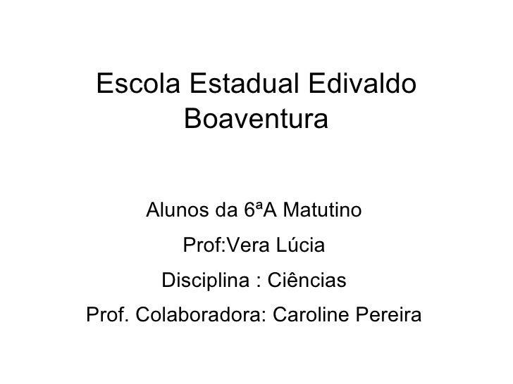Escola Estadual Edivaldo Boaventura Alunos da 6ªA Matutino Prof:Vera Lúcia Disciplina : Ciências Prof. Colaboradora: Carol...