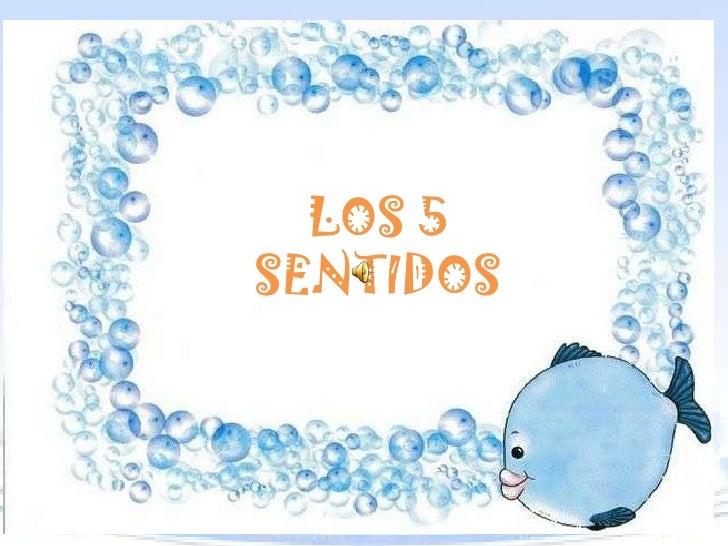 LOS 5SENTIDOS