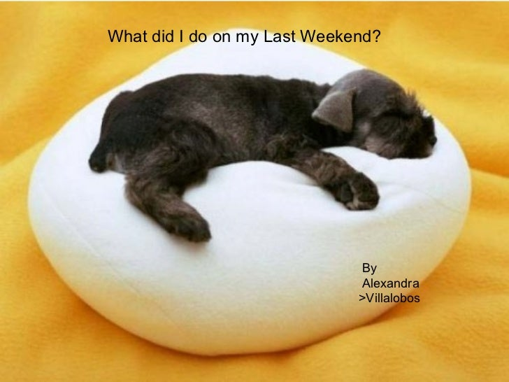 What did I do on my Last Weekend? By Alexandra  >Villalobos